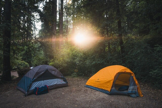 Two tents at a walk up campsite